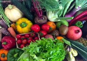 Buy Greenheart Family Box | Organic Fresh Fruit and Vegetables