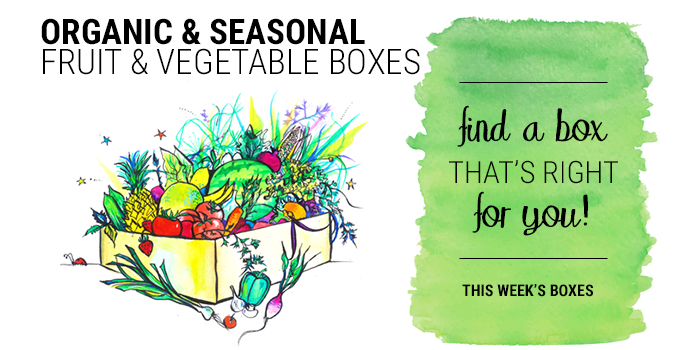 Organic and Seasonal sale of fruit and vegetable boxes