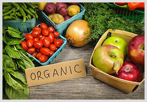 Organic Vegetables & Fruit - Greenheart Organic Farms UAE