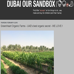 Dubai Our Sandbox February 20, 2016