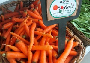 Carrots, Organic, Lebanon