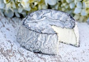 Selles sur Cher Berceau Goats Cheese